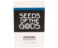 Efedra [Ephedra sinica] (Seeds of the Gods) 20 zaden