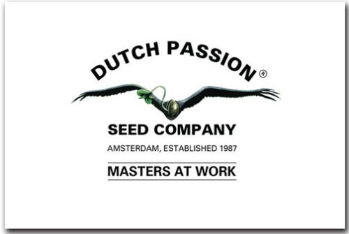 Dutch Passion Zaden logo Dutch Headshop